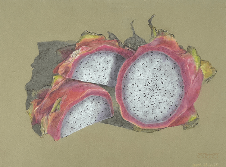 Soft pastel illustration of dragon fruit cross section